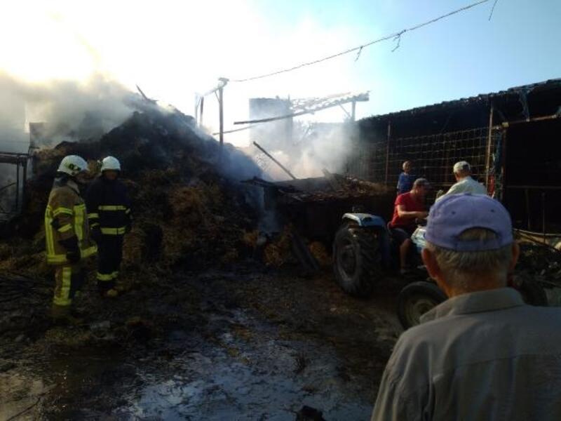 40 büyükbaşın bulunduğu ahırda korkutan yangın