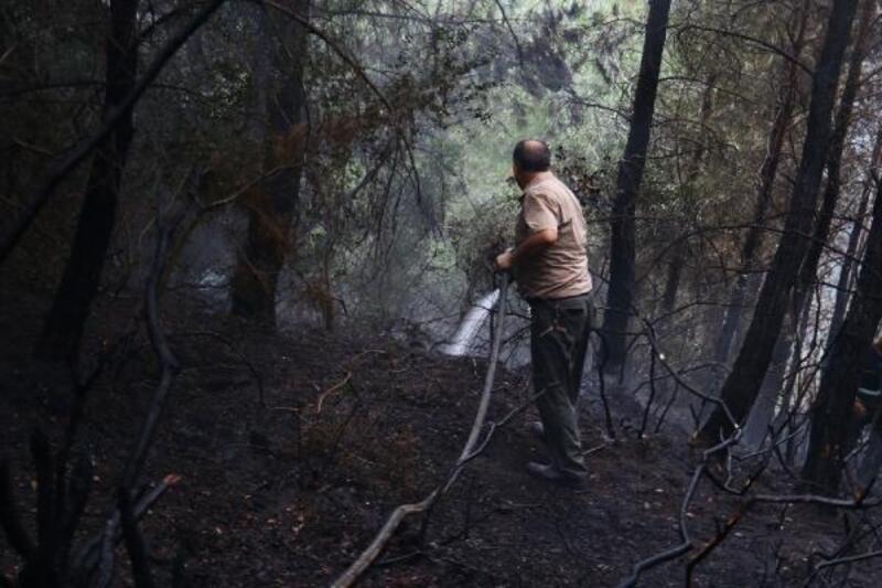 Osmaniye'de 2 hektar kızılçam alan yandı