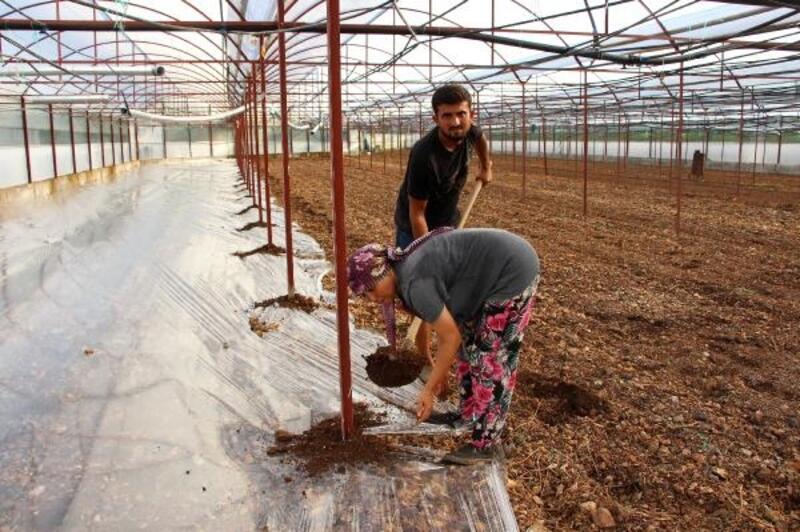Kumluca'da topyekûn solarizasyon uygulaması başlatıldı