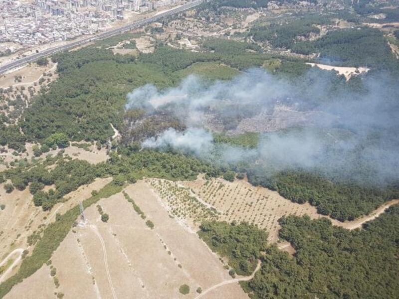 Buca'da çıkan yangında 5 hektarlık orman zarar gördü