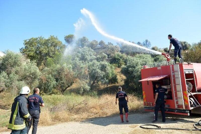 Ahırda çıkan yangın makilik alan ve tarım arazilerine sıçradı