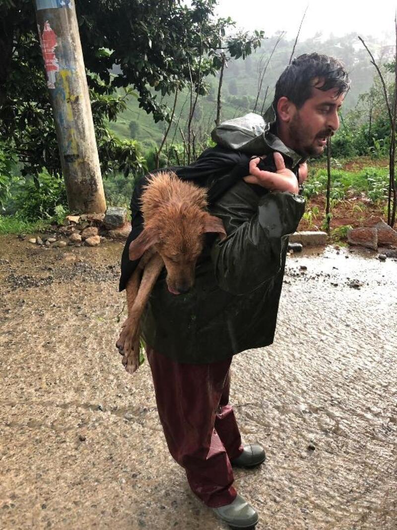 Yaralı köpeği sırtında taşıdı