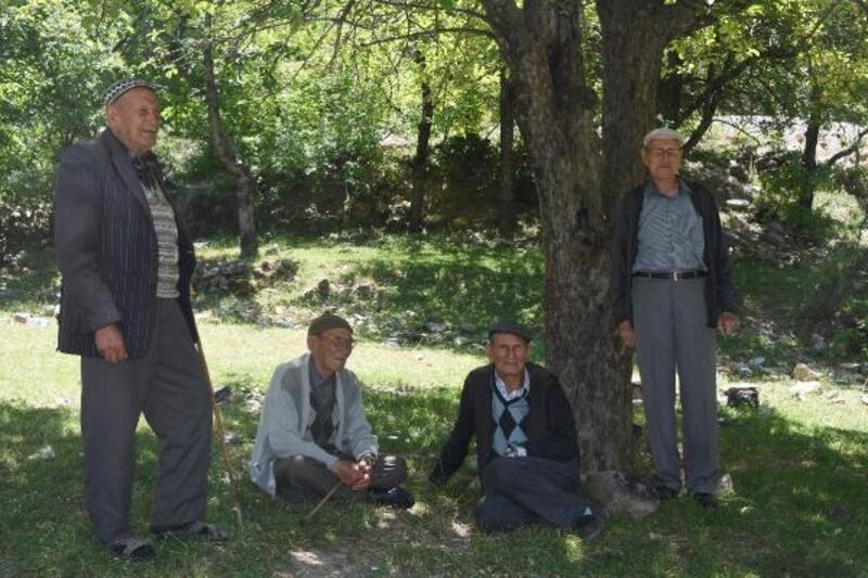 5 kardeş, kıraç toprakları ormana çevirdi