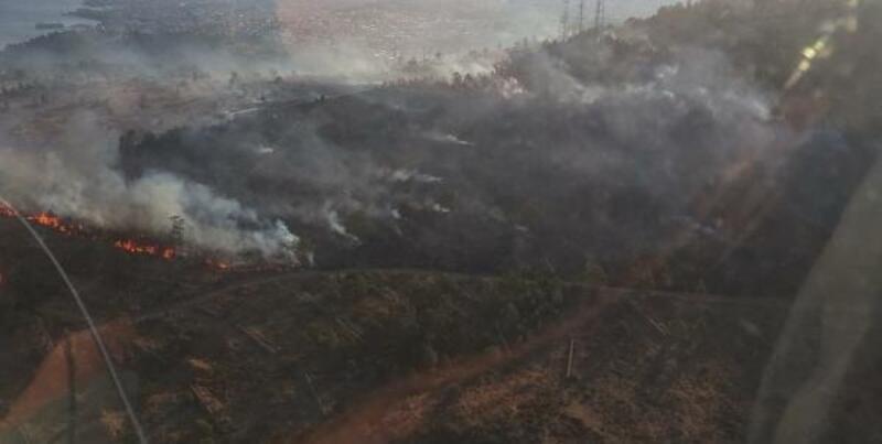 Ağaçlandırma erozyon sahasında yangın