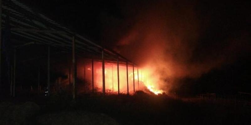 Çiftlik yangınında 2 bin balya saman kül oldu