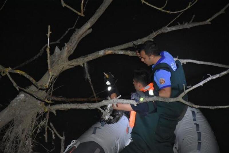 Deredeki ağaçta mahsur kalan karabatağı itfaiye kurtardı