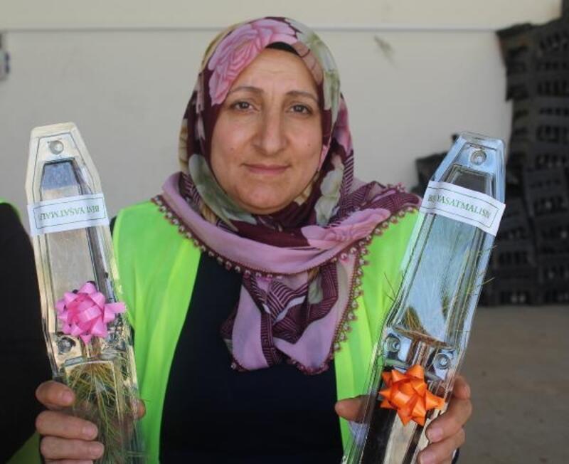 Sivas'ta kadın işçiler nikah fidanı üretiyor