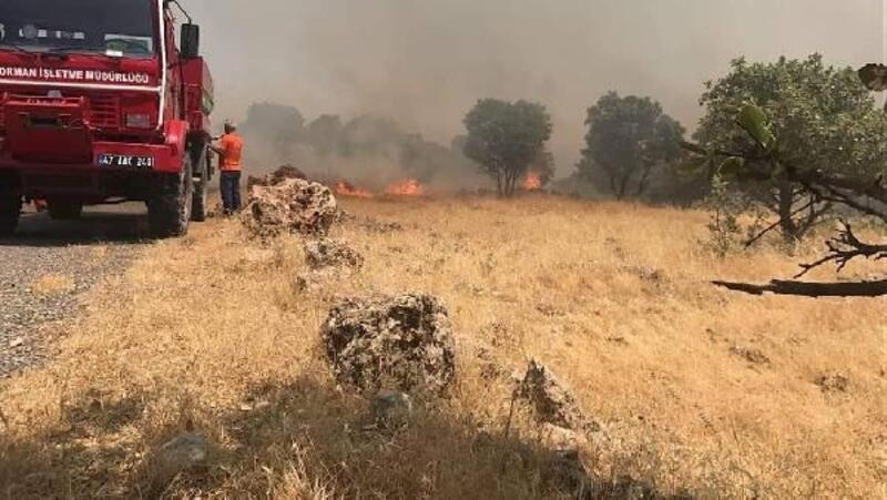 Mardin'de Süryanilerin yaşadığı köylere yakın dağda yangın