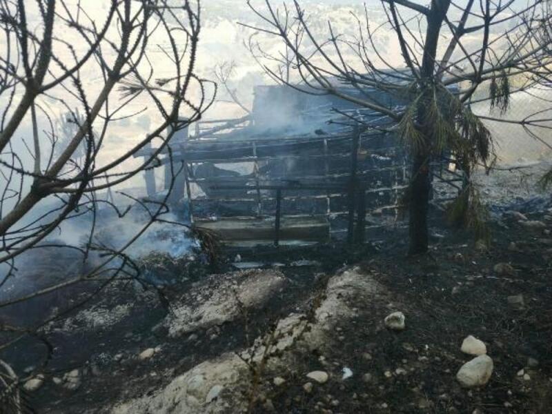 Otluk alandaki yangında kümesteki hayvanları itfaiye kurtardı
