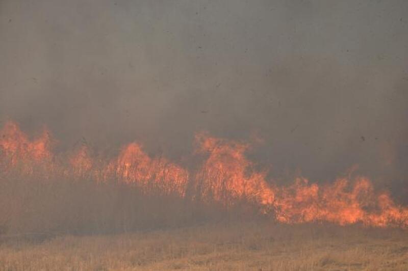 İslahiye'de 20 bin dönüm anız yandı