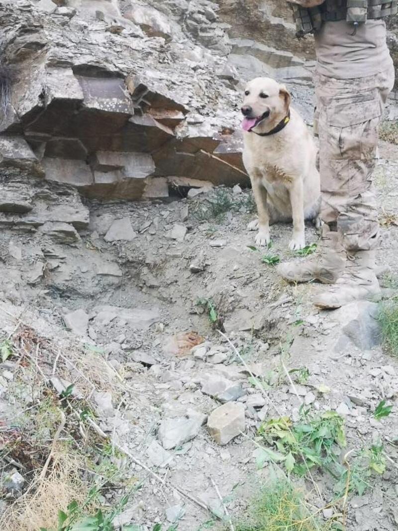 Başkale'de, PKK sığınağı ve EYP imha edildi