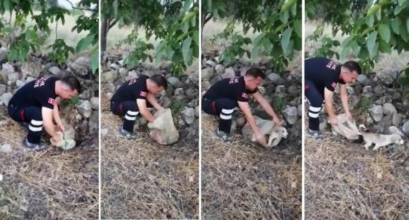 Yavru köpek, ağzı bağlı çuvalla yol kenarına bırakılmış