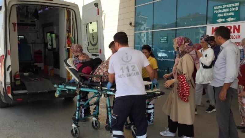 Armut ağacından düşen kadın yaralandı