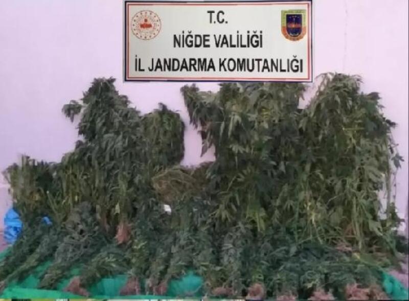 Niğde'de jandarmadan uyuşturucu operasyonu