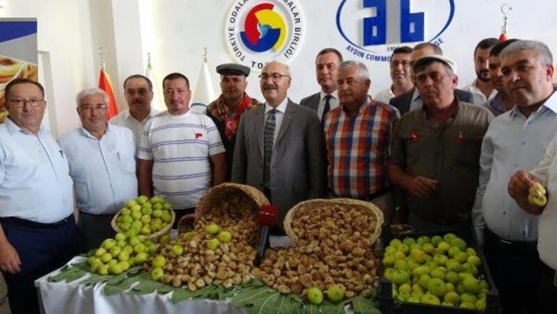 Aydın'da sezonun ilk kuru inciri kilosu 100 TL'den satıldı