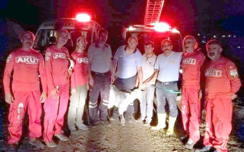 Mahsur kalan keçiyi AKUT kurtardı