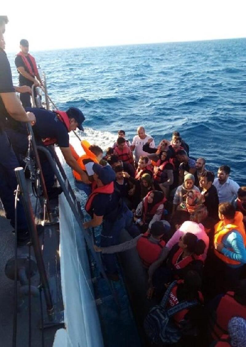 Edirne'de 77 kaçak göçmen yakalandı