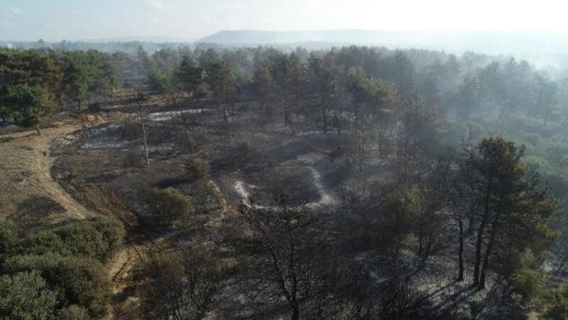 Gelibolu'daki yangında şehitlik, siper hattı ve savaş alanı zarar görmedi