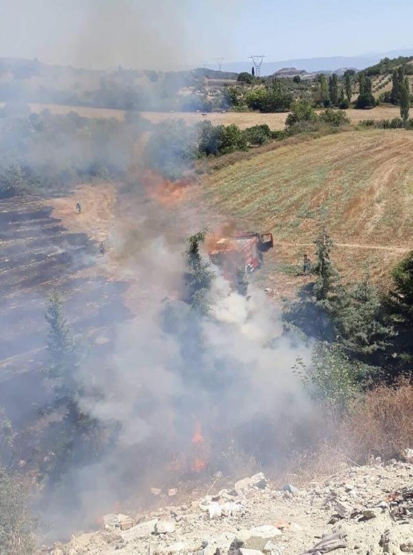 Kuşadası'ndaki makilik yangınında 2 hektarlık alan zarar gördü