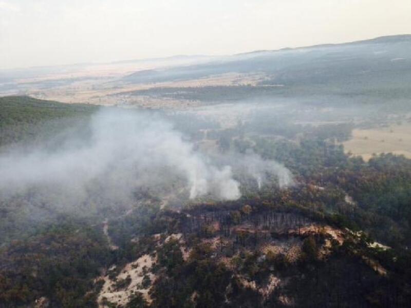 Eskişehir'deki orman yangını 15 saatte kontrol altına alındı