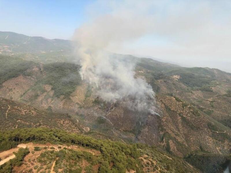 Bayındır'daki orman yangınında 'piknik ateşi' iddiası