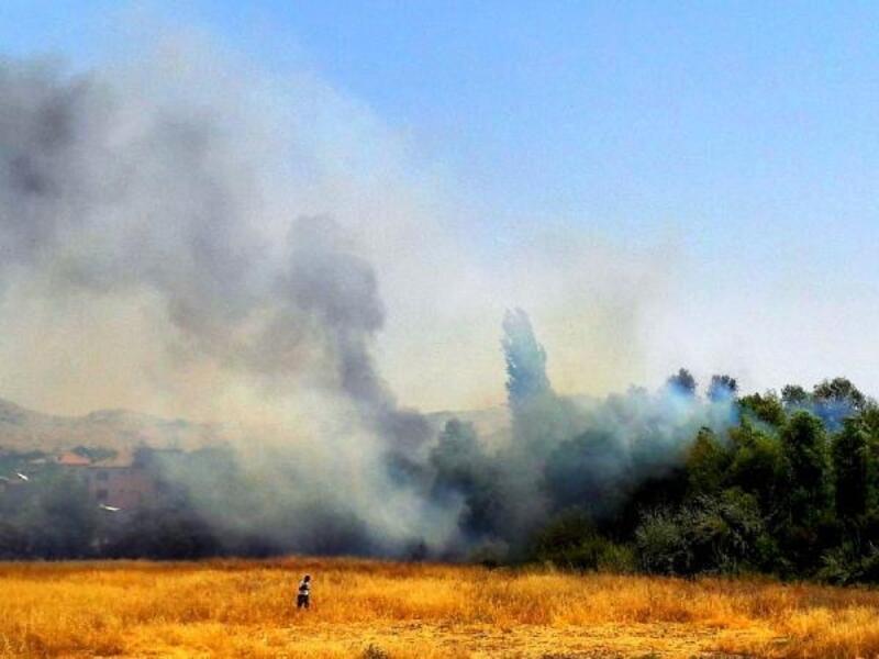 Malatya'da iki farklı alanda çıkan yangın, 20 hektarlık alanı küle çevirdi