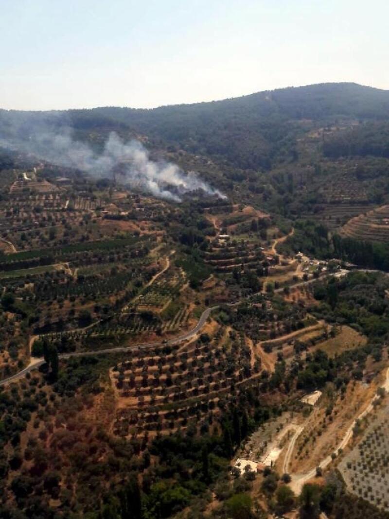 Şirince'de orman yangını