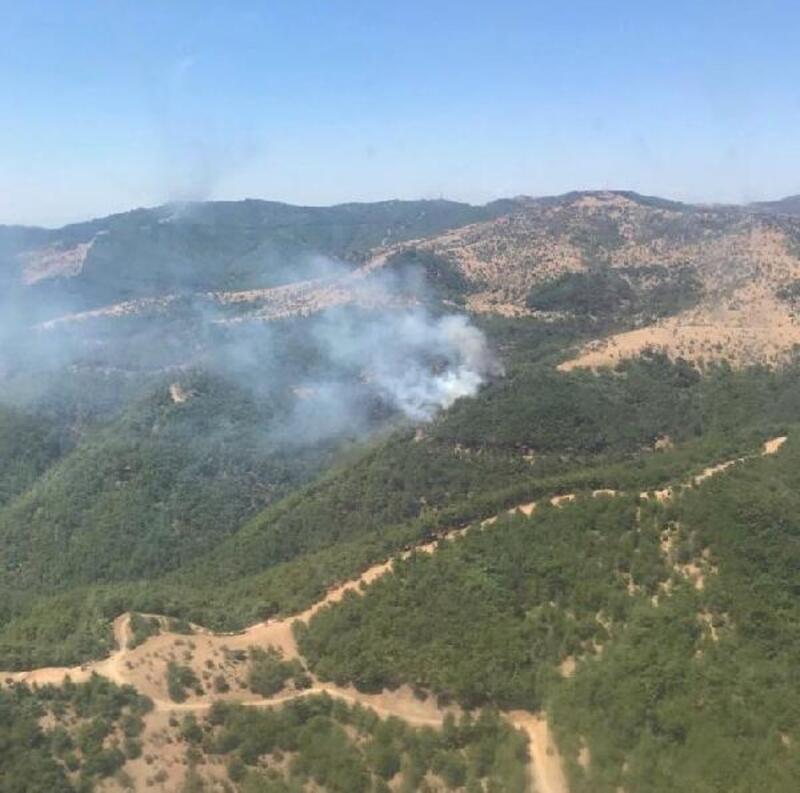 Karabağlar'da orman yangını