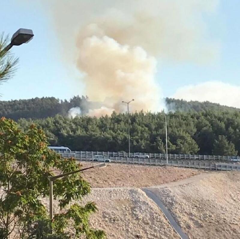 Buca'da çıkan orman yangını söndürüldü