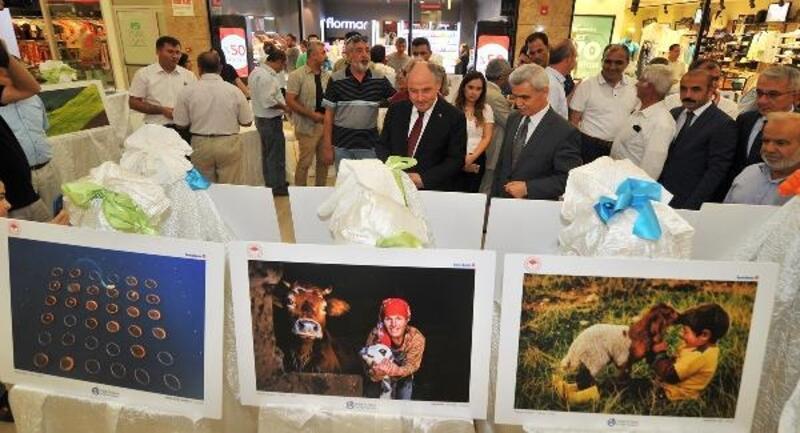 Osmaniye'de 'Tarım ve İnsan' fotoğraf sergisi açıldı
