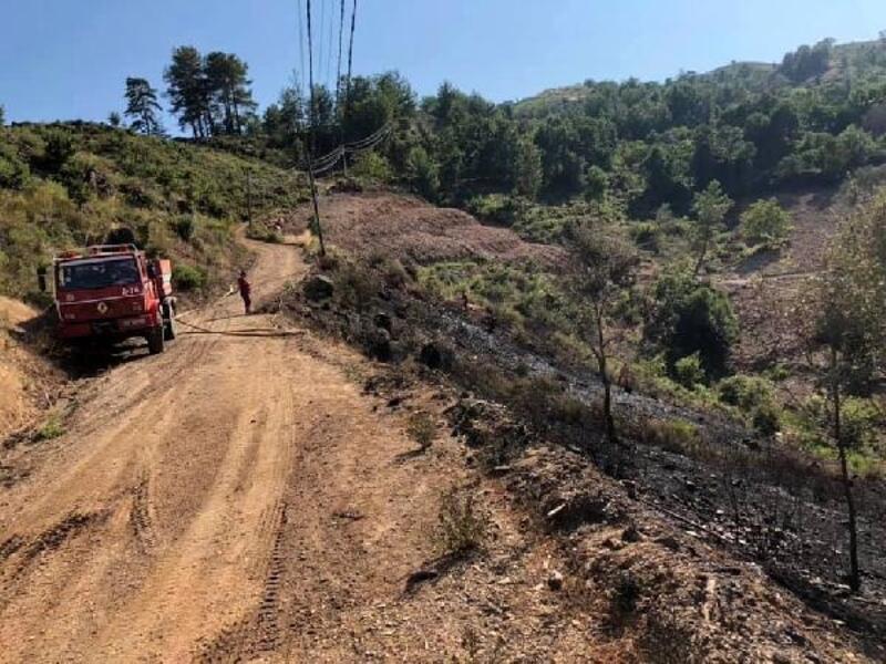 Gazipaşa'da makilik yangını