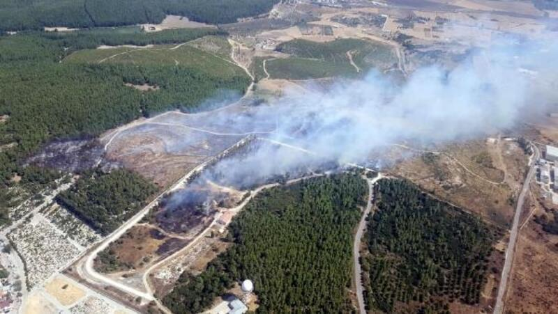Gaziemir'de orman yangını