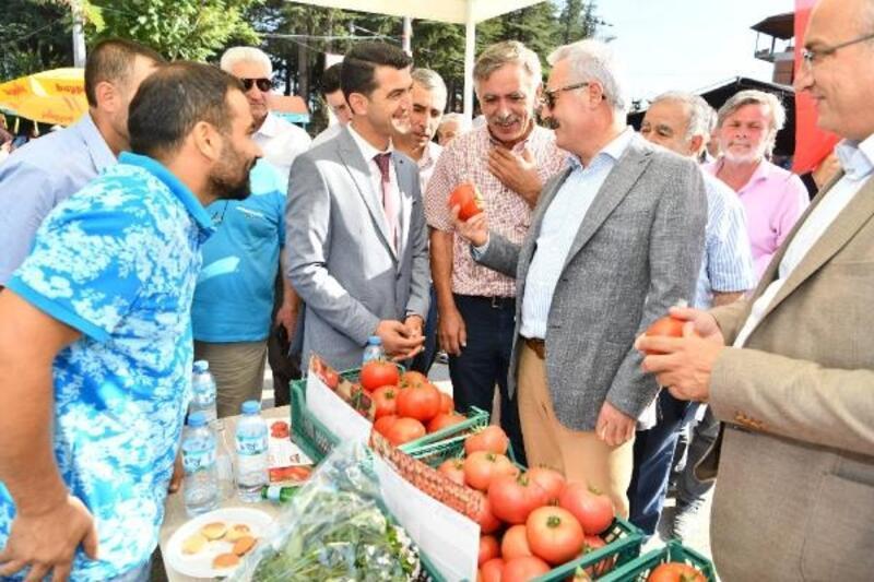 Deregümü'nde domates ve karanfil festivali