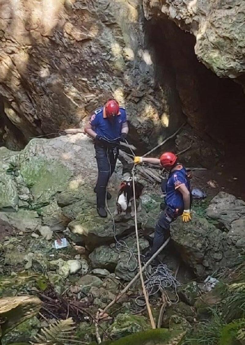 15 metrelik çukurda mahsur kalan köpeği AFAD kurtardı