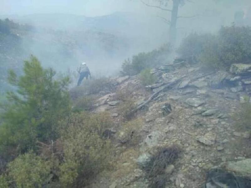 Yatağan ve Menteşe'de, yıldırımın isabet ettiği ormanlarda yangın