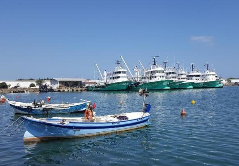 Karadenizli balıkçılar gece yarısı 'vira bismillah' diyor