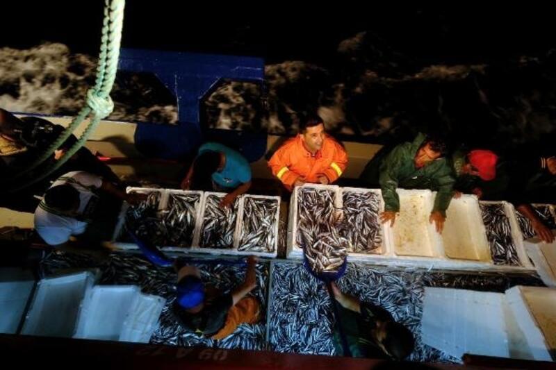 Yasak bitti, Kuşadası'nda balıkçılar 'Vira bismillah' deyip, denize açıldı