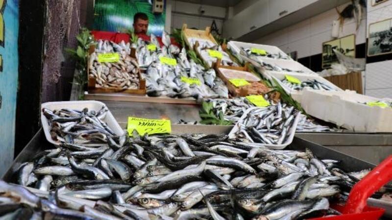 Çanakkale'de av sezonunun başlamasıyla balık fiyatları düştü
