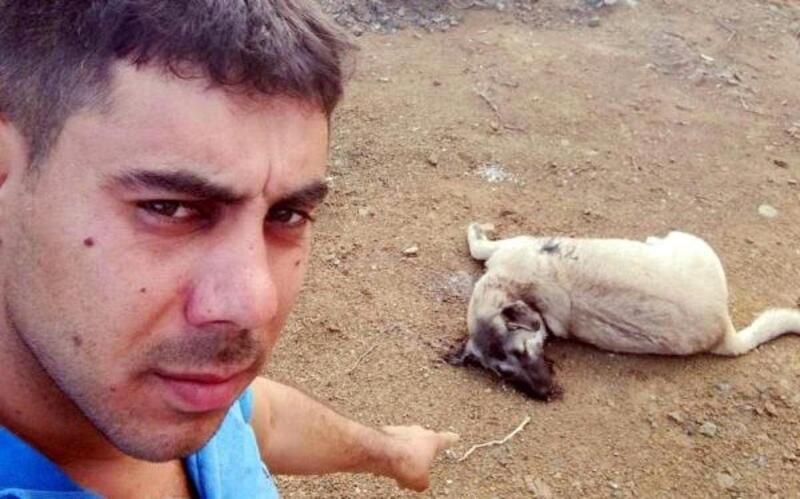 9 aylık köpek av tüfeği ile öldürüldü