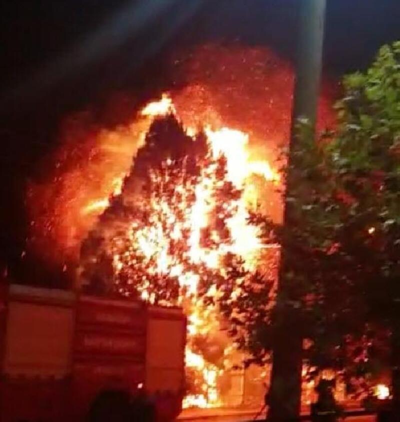 Elektrik tellerinden çıkan yangın çam ağaçlarını yaktı