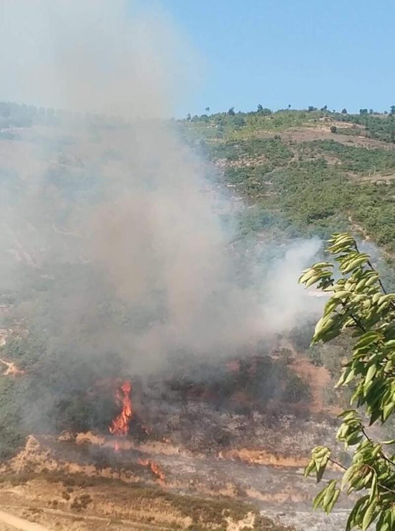 İznik'te makilik alanda çıkan yangın söndürüldü
