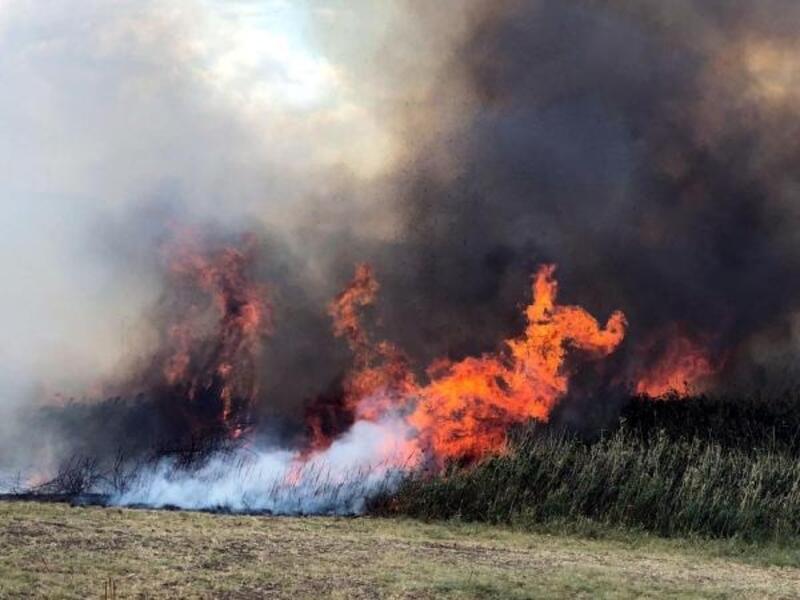 Lüleburgaz'daki anız yangını 1 hektarlık alanı kül etti