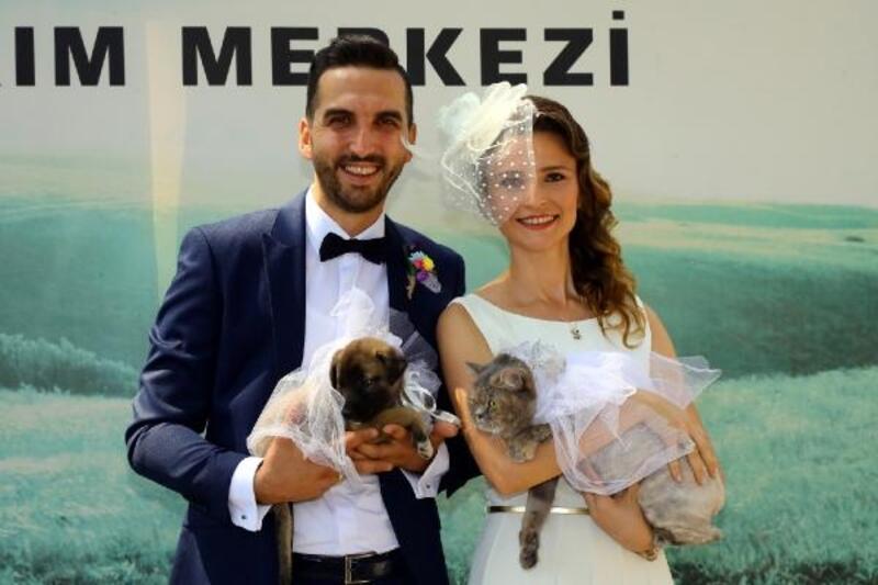 Hayvansever çift, barınakta evlendi