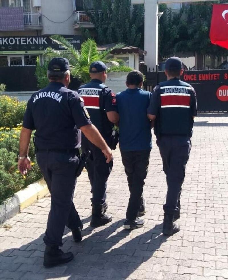 Menemen'de koyun hırsızlığına 2 tutuklama