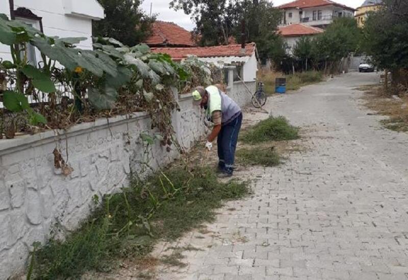 Turhal'da kaldırım ve yol kenarlarında yabani ot temizliği