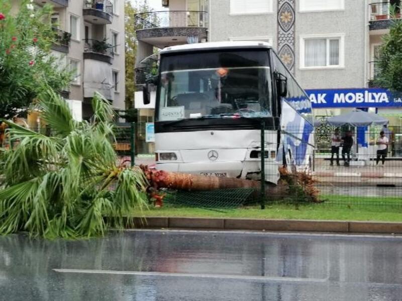Otobüs palmiye ağacına çarptı