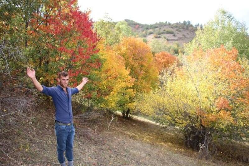 Oltu'da kartpostallık sonbahar manzarası