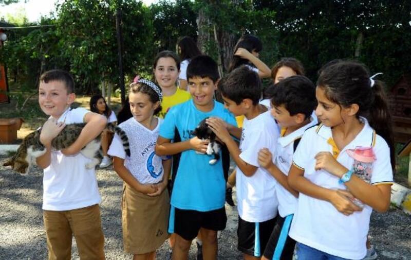 Manavgat'ta 'Hayvanları Koruma Günü' etkinliği
