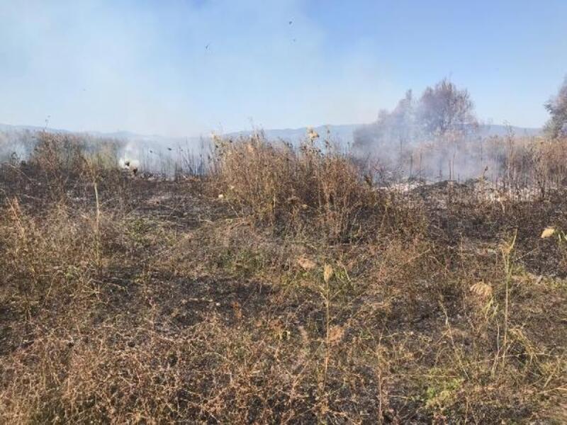 Orhangazi'de 10 dönüm sazlık alan kül oldu