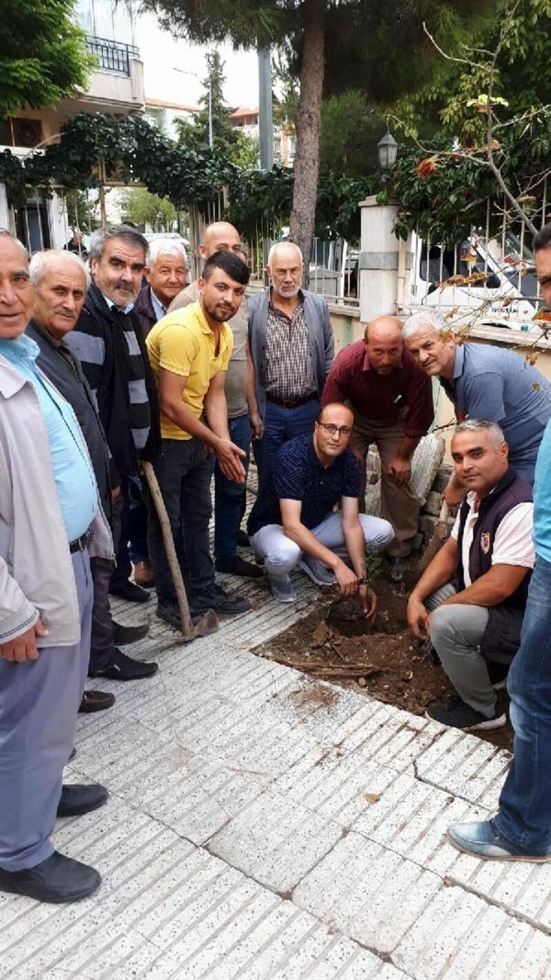 Kula'daki din görevlileri cami bahçelerine 200 fidan dikti